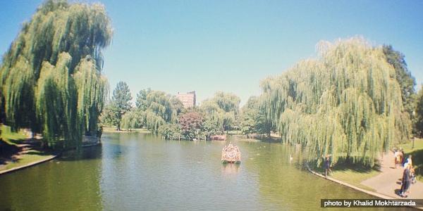 Boston Common Gardens