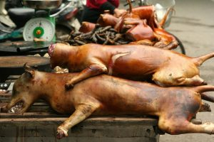 vietnam_dog_meat_thit_cho
